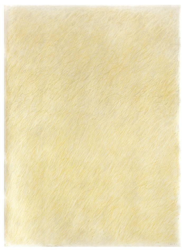 Crayon de couleur sur papier. 2017. 150 x 110 cm